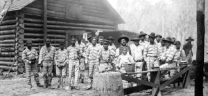 prison labourers at a Florida turpentine camp
